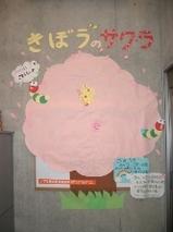 ★桜-縮小済み★.JPG